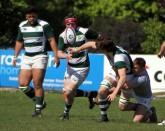Dorset & Wilts U 20 v Cheshire U 20 @ Moseley RFC. https://idrismartin.wordpress.com/