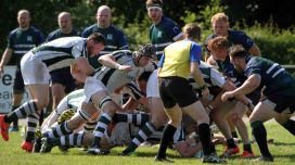 Billy Beaumont County Championship Div 3 Pool 2. Berks Green white hoops D&W white green hoops. Royal Wootton Bassett hooker Phil Bardwell crashes over to touch down for a try for Dorset & Wilts. https://idrismartin.wordpress.com/